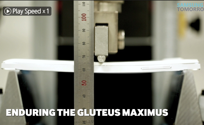 Enduring-the-Gluteus-Maximus